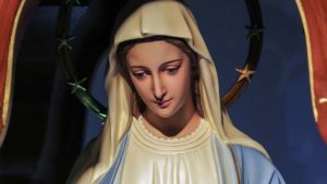 UM MÊS COM MARIA | 8º DIA – O PARAÍSO
